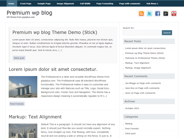 Premium wp blog wordpress theme